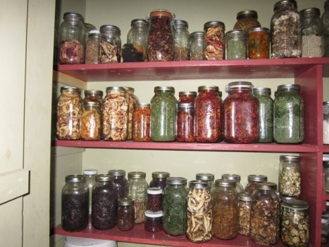 The winter pantry. Or a fraction of it, anyway