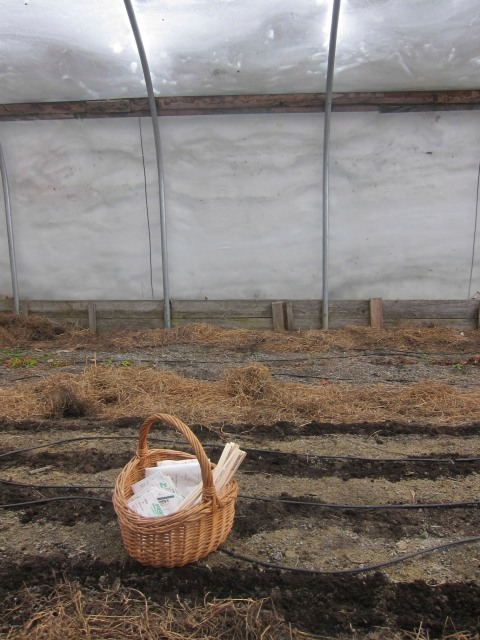 Seeding time. Check the snow against the hoop house!