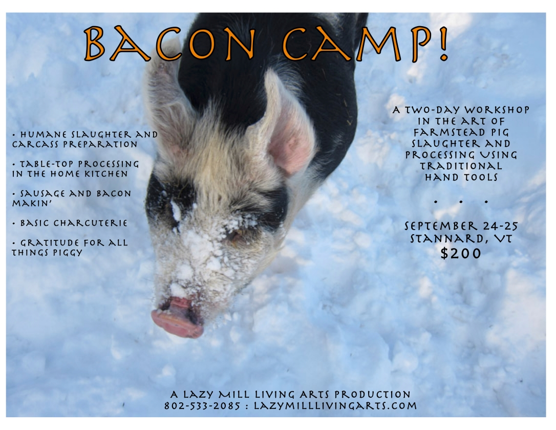 baconcamp